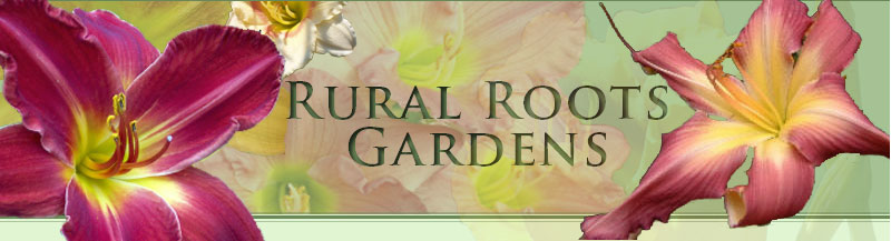 Rural Roots Gardens - Formerly Cedar Ridge Gardens